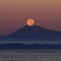 Photos: 夜明けのセレナーデ・夢