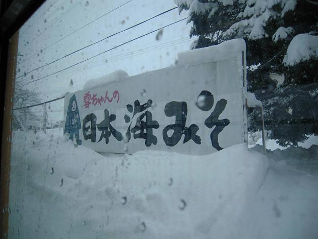 写真: 日本海みそs