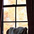 Photos: 2011.12.19 山手西洋館 世界のクリスマス2011 外交官の家 (アイルランド) 5