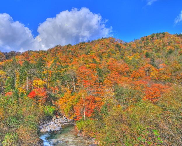 秋の山(HDR)