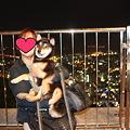 Photos: 徳島・眉山1