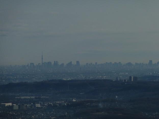 高尾山から見た東京都心&スカイツリー・2012