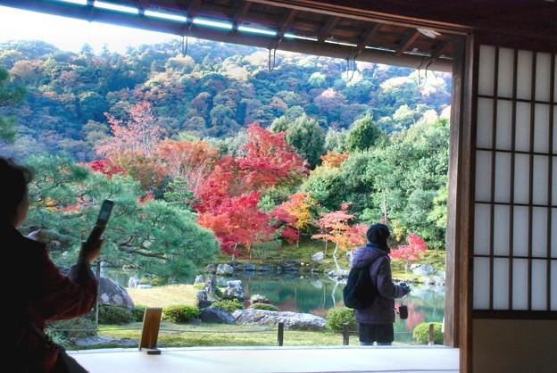 嵐山に連なる天竜寺の大方丈から・曹源池の紅葉-1-D8-094