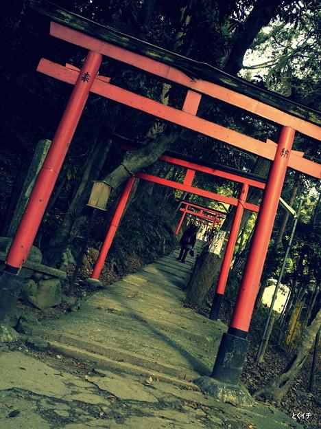 上賀茂神社 4