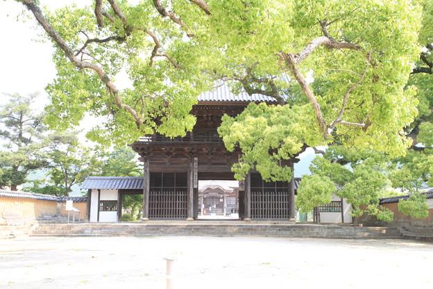 Photos: 110517-58周防国分寺・楼門