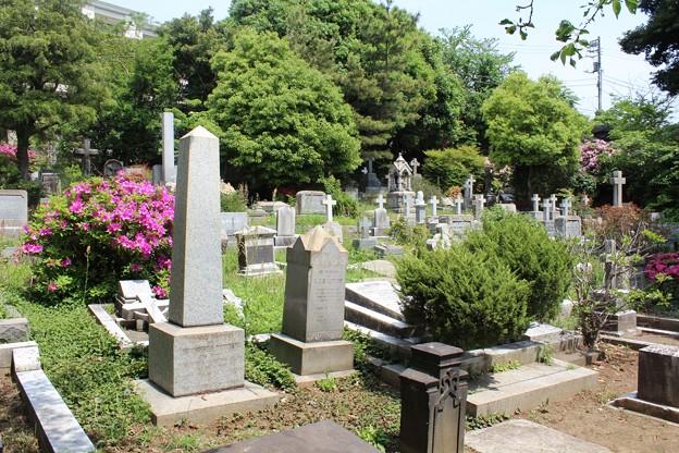 横浜外国人墓地3