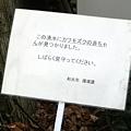 写真: 2012-03-10 22:26:32