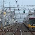 Photos: 京阪複々線にて