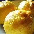 Photos: もぎたて柚子~サザエのようにツノがあったりする(正月用)~