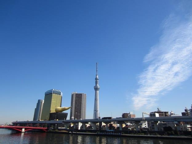 12.02.21.12:30駒形橋より2