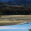 Photos: 木津川の流れ