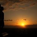 夕陽と像  希望・友愛