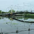 十二町潟水郷公園