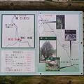 Photos: 洞杉マップ