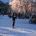 Photos: 桜巡礼`12'(身延、久遠寺、桜と人編)-6