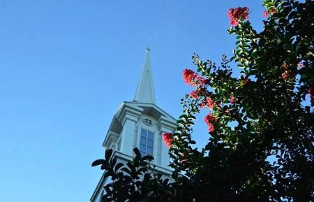 サルスベリの教会