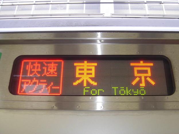 Photos: 快速アクティー 東京行