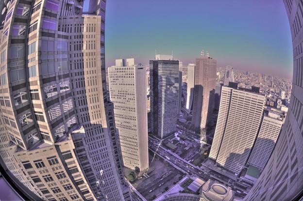 高層ビル群。。。都庁から
