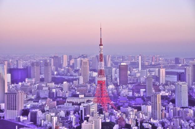 やっぱりシンボルは東京タワー。。都庁から