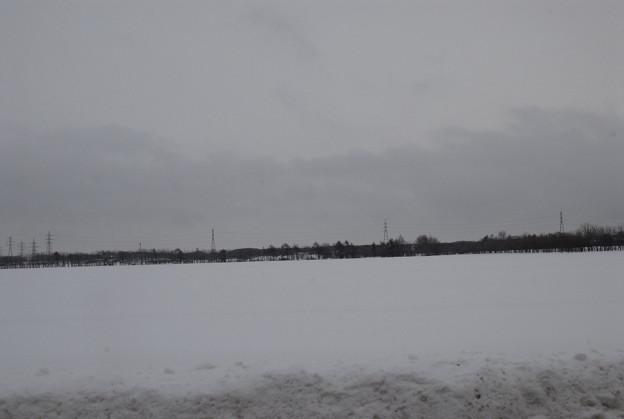 フォト蔵物悲しい風景アルバム: 公開 冬の風景 (1302)写真データ野鳥大好きさんの友達 (50)フォト蔵ツイート