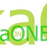 KA/ONE