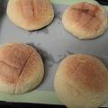 写真: 自家製メロンパン焼けた
