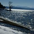 光る猪苗代湖
